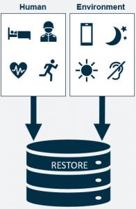 restore diagram
